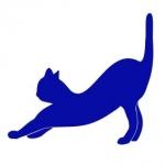 Naklejka do dekoracji Kot M17