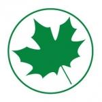 Naklejka na samochód Zielony listek A3