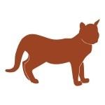 Naklejka welurowa dekoracyjna Kot W15