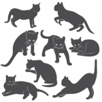Szablony do malowania Zestaw kotów S1