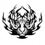 Naklejka na samochód Ognisty tygrys A5