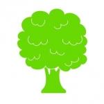 Naklejka ścienna dla dziecka Drzewo M4