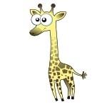 Naklejka ścienna Żyrafa K14