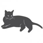 Welurowa naklejka ścienna Kot W11