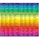 Naklejki na schody 128x10 cm - język angielski czasowniki nieregularne nr K2