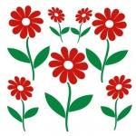Naklejki ścienne Kwiaty K13