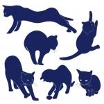 Szablony ścienne Rodzina kotów S16