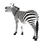 Naklejka welurowa Zebra W2