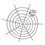 Naklejka ścienna Pajęczyna M5