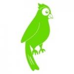 Naklejka ścienna Papuga M9