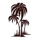 Szablony ścienne Drzewa Palmy S29