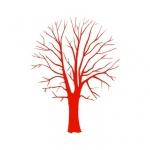 Naklejka welurowa ścienna Drzewo bez liści W12